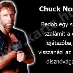 Chuck Norris s a szalmi